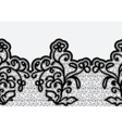 Seamless horizontal lace ribbon with flowers vector image vector image