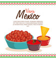 delicious mexican food and sauces vector image