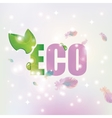 Eco with leave background of feathers vector image vector image