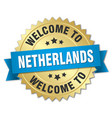 netherlands 3d gold badge with blue ribbon vector image vector image
