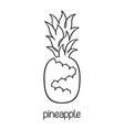 pineapple line art vector image