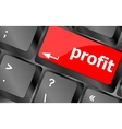 profit button on keyboard keys - business concept vector image vector image