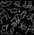 seamless background cats and rats sketches vector image vector image
