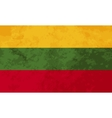 True proportions Lithuania flag with texture vector image vector image