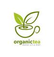organic green tea logo vector image
