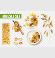 cereal muesli transparent set vector image vector image