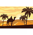 Egyptian camel and man at sunset vector image