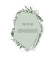 eucalyptus silver dollar green branches leaves vector image vector image