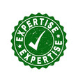 expertise grunge stamp with tick vector image vector image