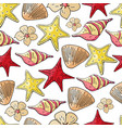 hand drawn seashells and starfish vector image vector image
