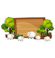 sheep on the wooden banner vector image vector image
