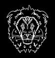 hand-drawn pencil graphics lion vector image