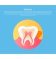 Dental Care Tooth Icon vector image