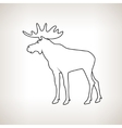 Moose Bull with Antlers vector image
