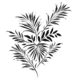 Palm leaves Doodle style vector image