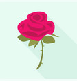 rose icon flat style vector image