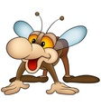 brown housefly vector image vector image