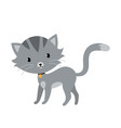 gray cat in flat style isolated on white vector image vector image