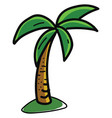 palm tree on white background vector image vector image