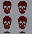 pattern with skull in realistic hand drawn vector image