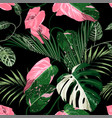 pink green liana branch and tropical leaves vector image vector image