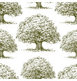 seamless background oak trees sketches vector image