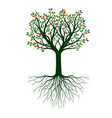shape tree with colour leaves outline plant vector image vector image