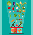 shopping basket full of vegetables vector image vector image