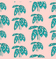 tropical monstera leaves on pink background vector image vector image