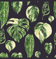 watercolor tropical green leaves seamless pattern vector image vector image