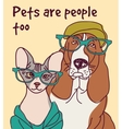 Pets animals fashion card letter sign poster vector image