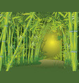bamboo forest scene vector image vector image