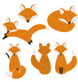 cute fox set vector image