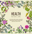 health natural care vintage collection vector image