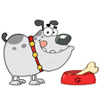 gray bulldog with a bone in his dish bowl vector image vector image