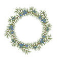 isolated round frame of a juniper vector image vector image