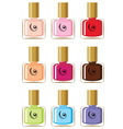Nail polishes vector image vector image