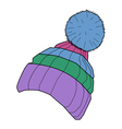 winter cap vector image