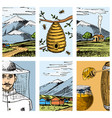 apiary farm cards hand drawn vintage honey vector image vector image