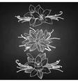 Graphic vanilla vignette vector image