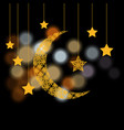 ramadan crescent with the stars background of vector image vector image