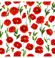 seamless pattern of poppy flowers bunch vector image vector image