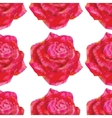 seamless roses ornament vector image vector image