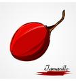 tamarillo vector image vector image