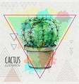 hand drawing cactus on watercolor background vector image vector image