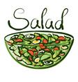 salad vector image vector image