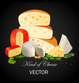 still life of cheeses of different types with the vector image