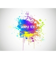 Abstract Paint Splash Background vector image vector image