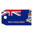 cayman islands flag on price tag vector image