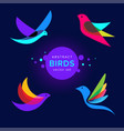 set modern abstract birds logo template vector image vector image